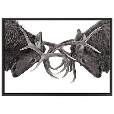Corporate Artwork - #6 Eye to Eye Horizontal
