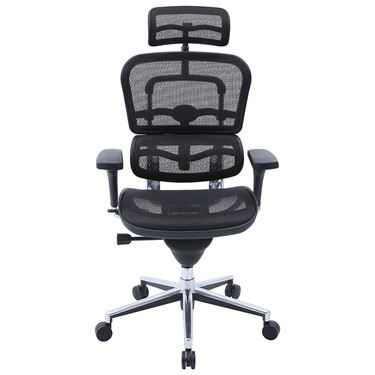 Ergohuman High Back Mesh Office Chair