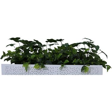 Built Strong Planter Box Low Height Greenery