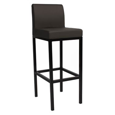 Solo Stool with Backrest Standard Height with Black Frame